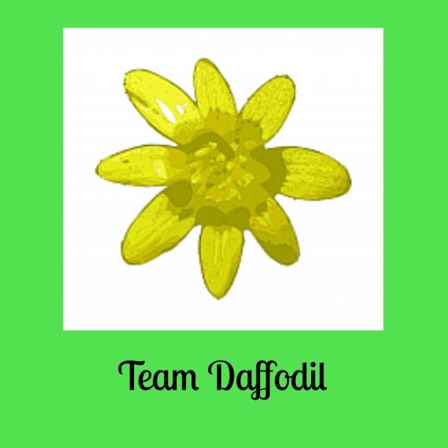 teamdaffodil