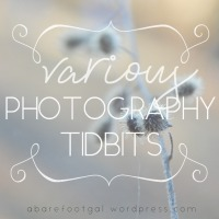 Various Photography Tidbits